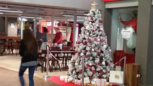 The Technion's Christmas tree (copyright Firas Espanioly)
